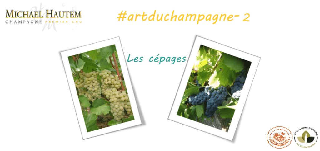Actu_les_Cépages